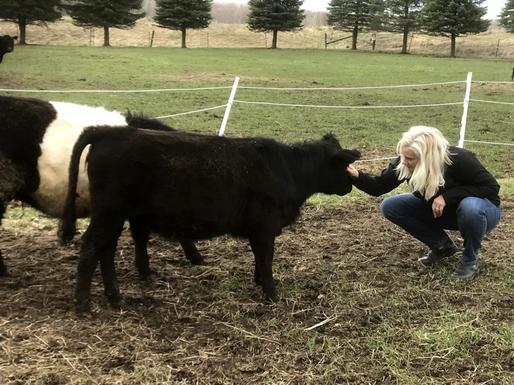 jen and calves